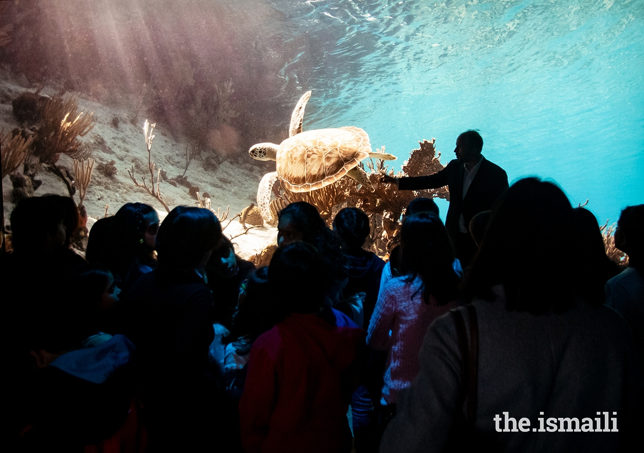 Prince Hussain tells young students the story behind a photo of a turtle at The Living Sea photo exhibition in Lisbon.