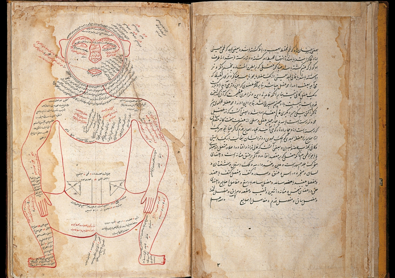 Manuscript of Tashrih-e Mansuri (Mansur's Anatomy)