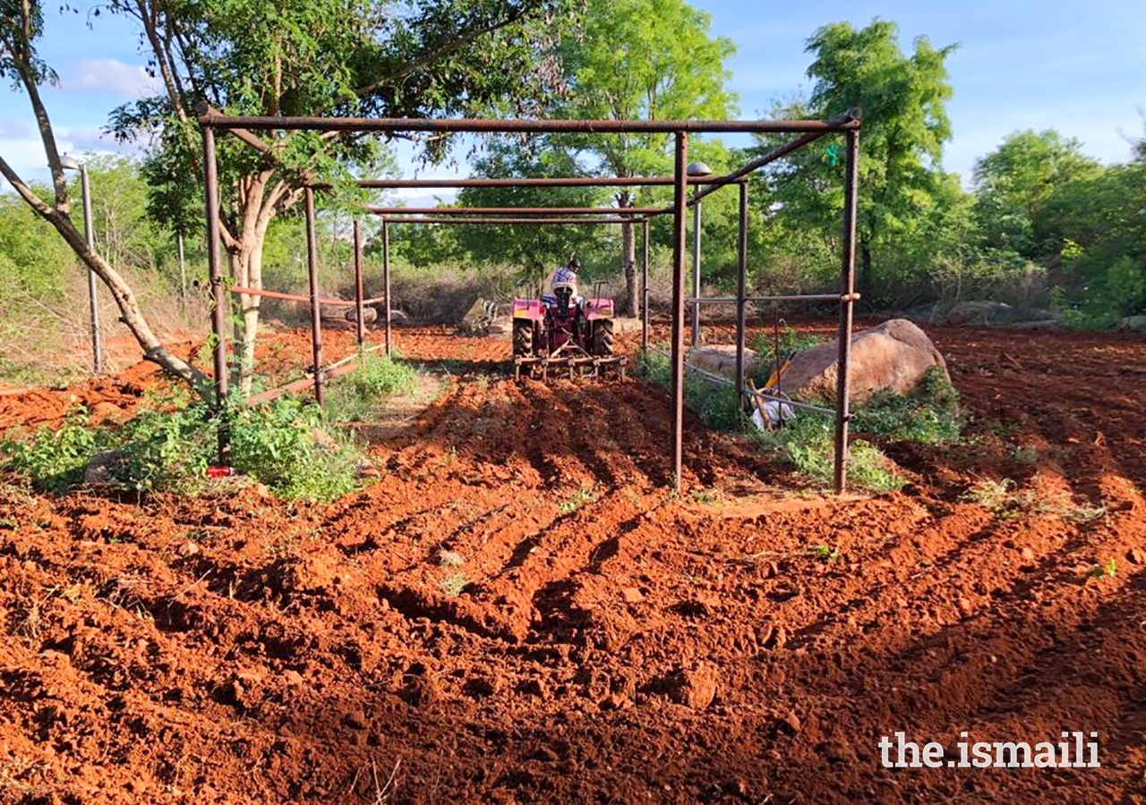 Students cultivated an 8,000 square yard organic farm.