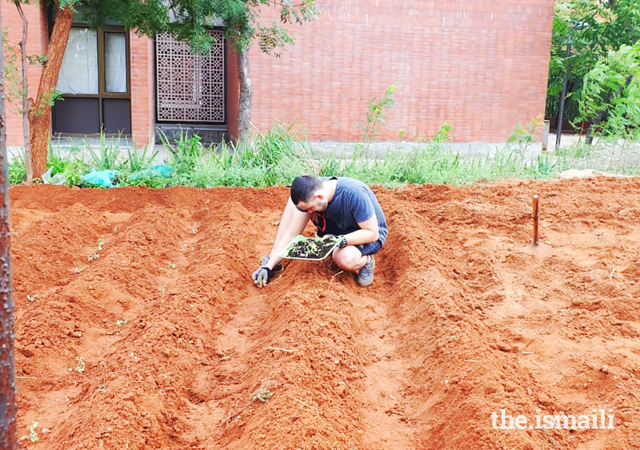 To initiate the farm, students had to dig up the ground, remove unwanted stone, and soften the soil.