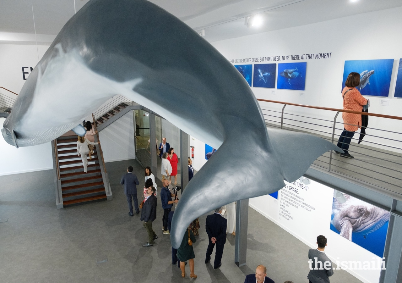 The Living Sea exhibition was hosted by Portugal's National Museum of Natural History and Science in Lisbon.