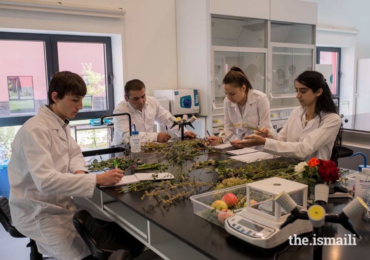 Students using a Wet Lab at UCA's Khorog Campus.