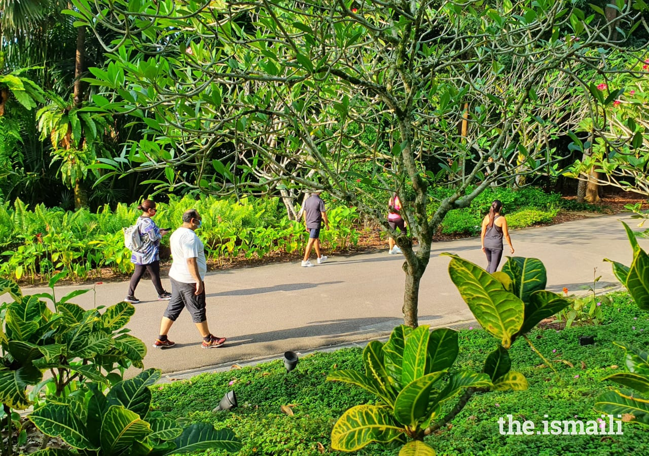 In Singapore, the Ismaili Council for the Far East organised a walk focused on mindfulness. Participants laced up their sneakers and walked in the lush, picturesque Botanic Gardens of Singapore.