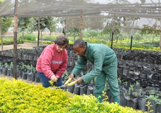 Roshan Hemani is the Plant Nursery Manager at the Aga Khan University's Principal Campus in East Africa at Arusha.