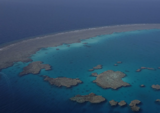 The film 7 Seas is shot in Sataya Reef, along Egypt's Red Sea coast, where Prince Hussain spent time swimming with and photographing spinner dolphins, against a backdrop of crystal clear waters.