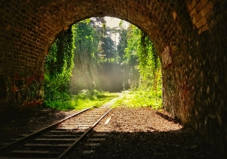 As the spring season approaches, there is light at the end of the tunnel in our journey towards normalcy.