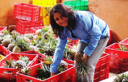 Aliya Shivji at her family's packing yard with pineapples destined for export. Photo: Edward Sempijja