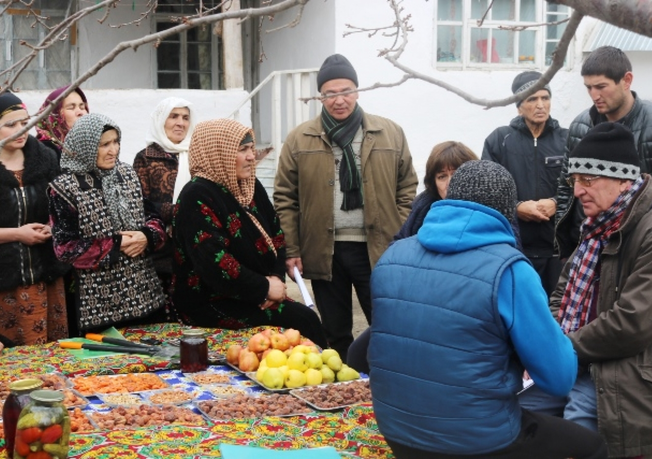 Shiraz and experts meeting with Women's Producer Group for improved apricot production and processing, Pastighav village, Kuhistoni Mastchoh district.