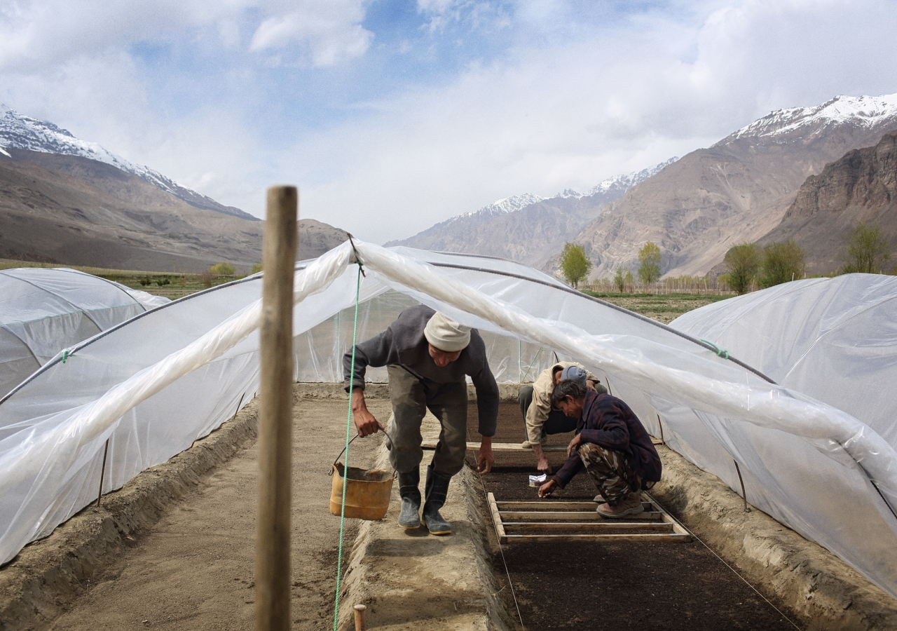 TKN volunteers have contributed to studies assessing AKF's and AKDN's impact on food security in several countries, including Afghanistan.