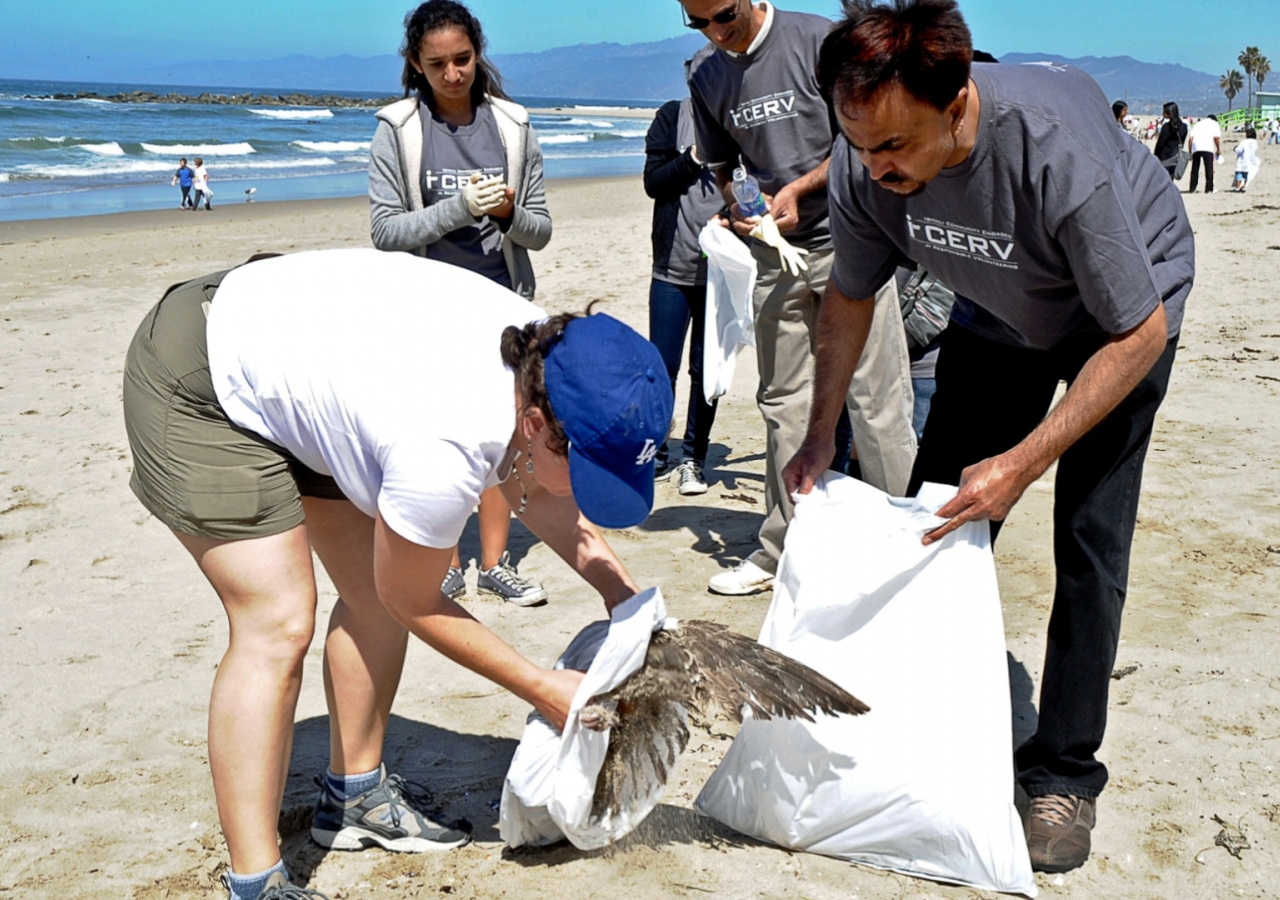 Working with volunteers from other communities, Ismaili Muslims help clean up Venice Beach in California.