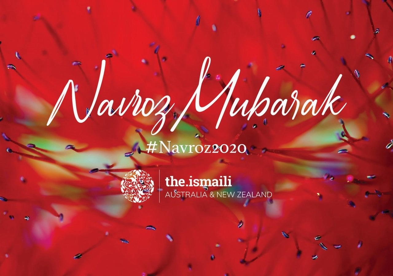 The Story of Navroz 2020