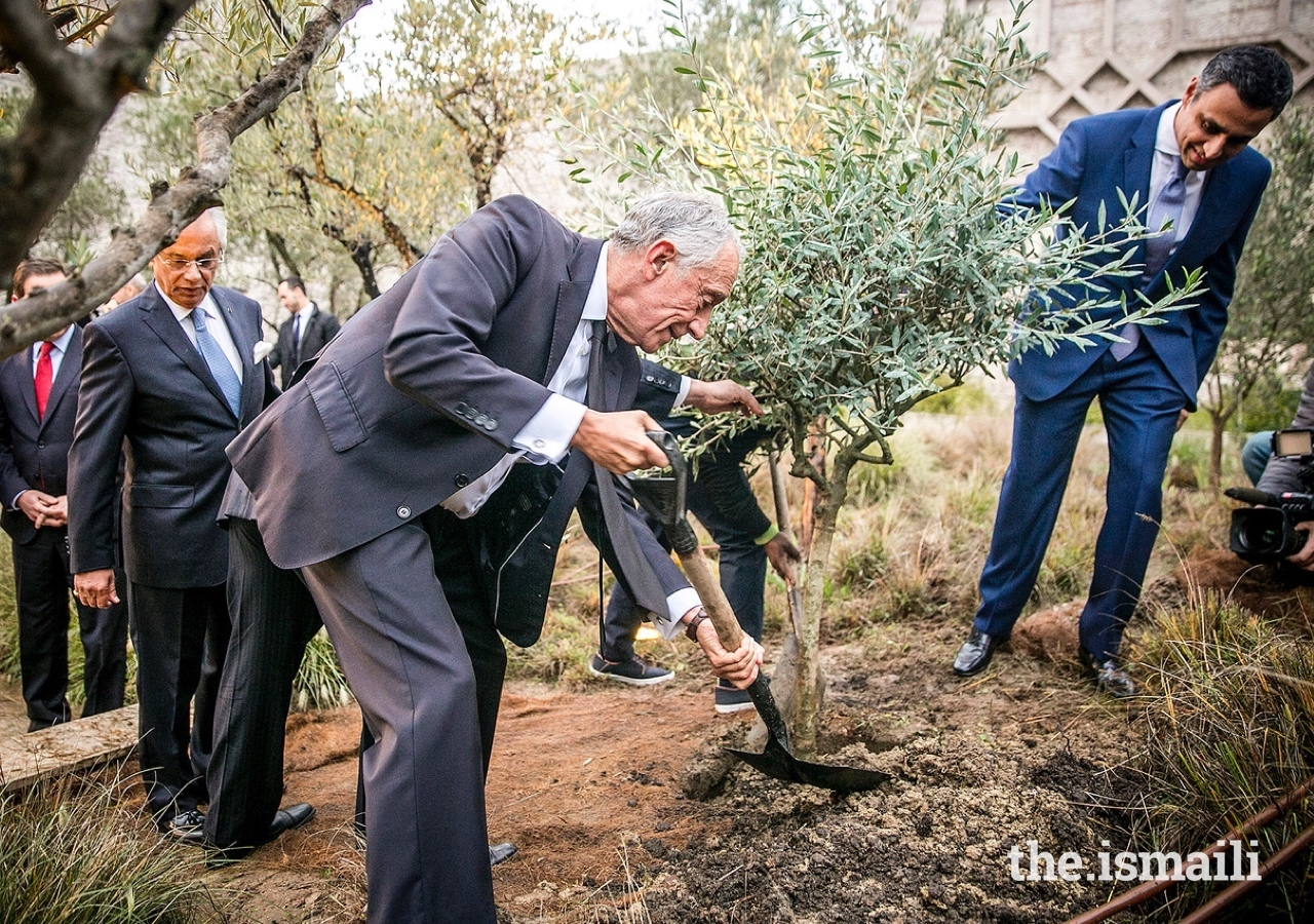 President of the Portuguese Republic, Marcelo Rebelo de Sousa, planting an olive tree, a symbol of peace and harmony, in the garden at the Ismaili Centre Lisbon.