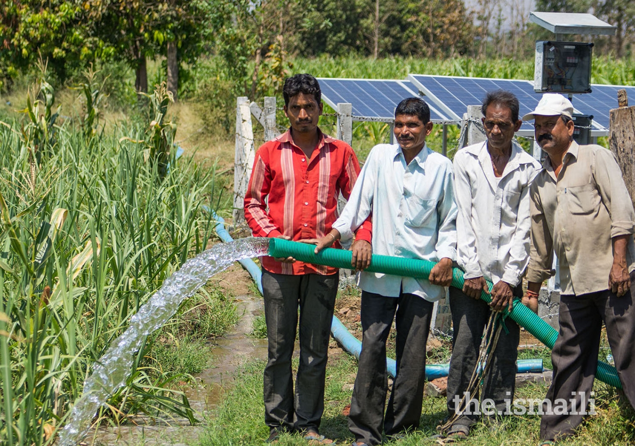 The Programme's activities around solar energy have scaled in recent years.