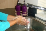 Always wash your hands thoroughly before handling or preparing food ingredients.