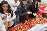Alternate Winter Break brought together over college students from around the USA, who spent their winter break engaged in service at food pantries, schools and community service centers.