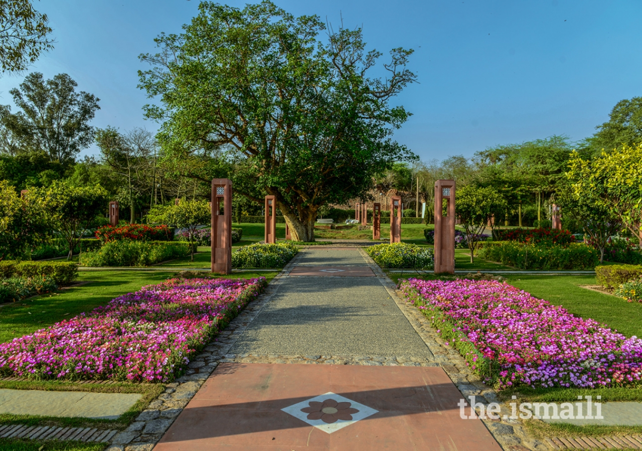 An arboretum exhibiting the flora of the Delhi region is a central objective of the landscape plan.