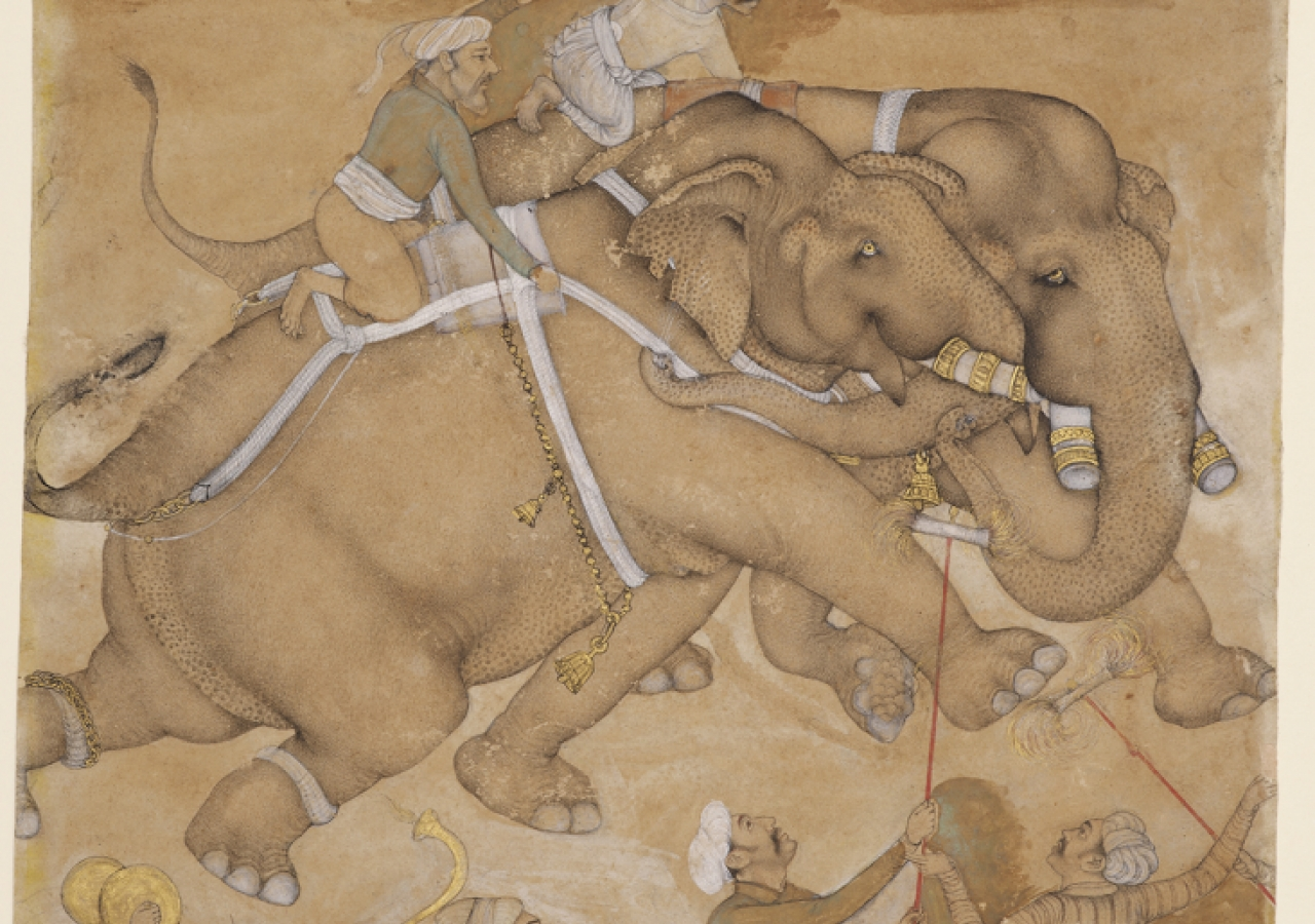 An elephant fight - Agra, India, about 1630. Paper, opaque watercolour, gold.