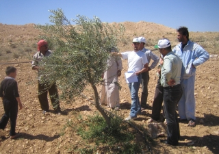 AKF Rural Support Team visits a farm in Syria to check on the new irrigation system.