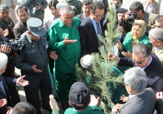 Ismaili Council and Kabul City leaders plant the first tree at an event marking Navroz.